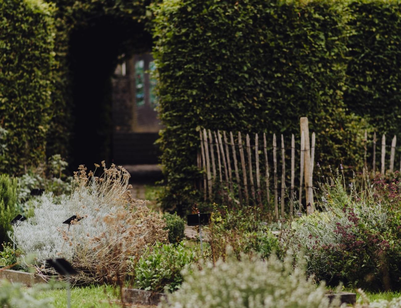 Collégiale Saint Ursmer de Lobbes Jardin de Folcuin 4